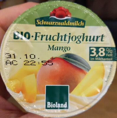 Bio Fruchtjoghurt Mango - Produit - fr