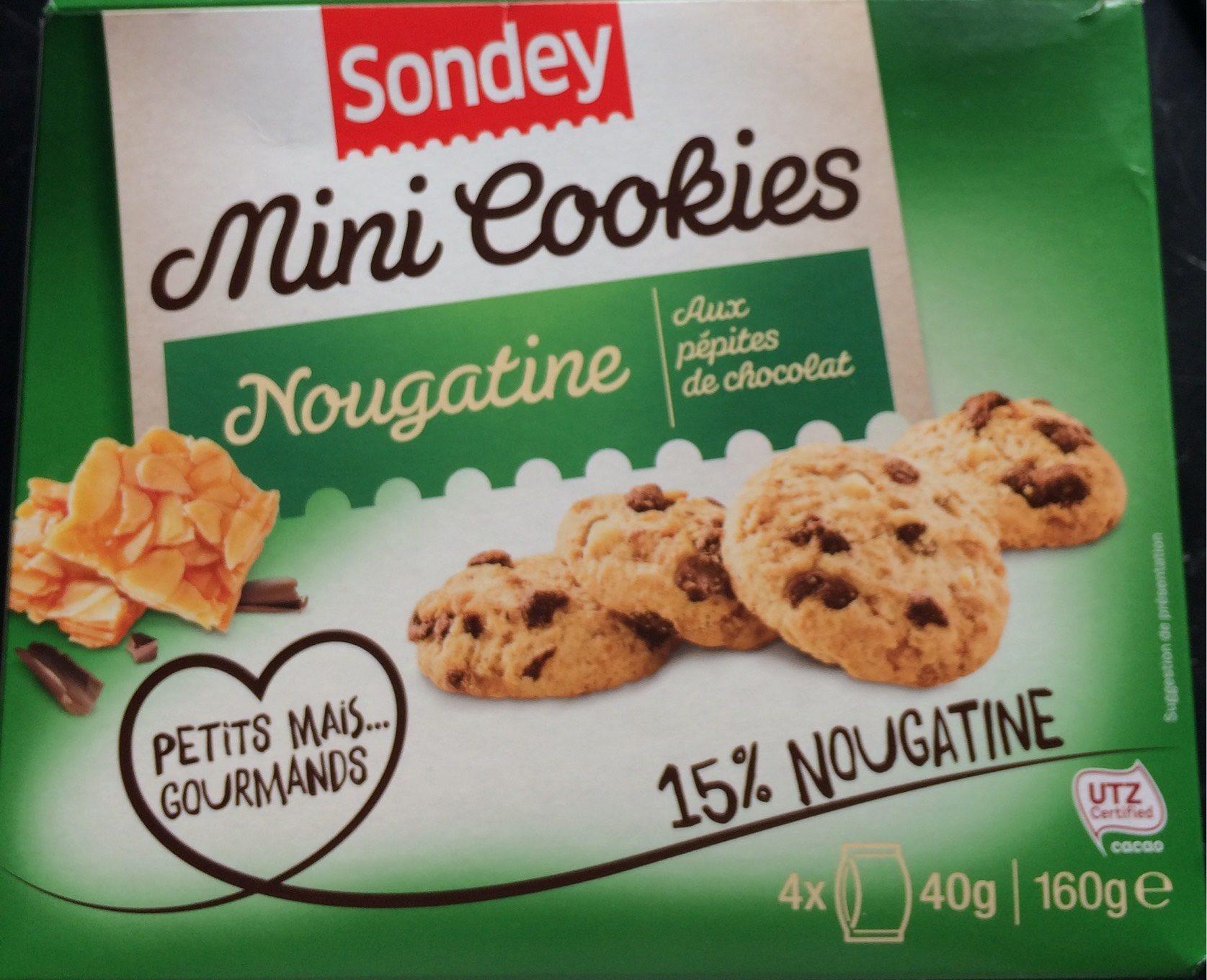 Mini Cookies Nougatine aux Pépites de Chocolat - Produit