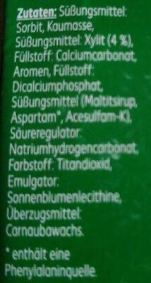Kaugummi spearmint - Ingredients - de