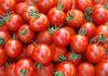 Tomato - Product