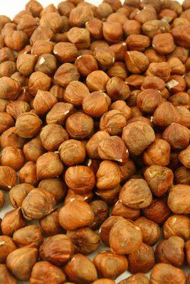 Hazelnut - 1