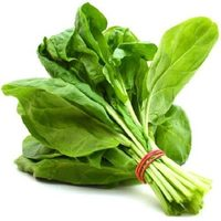 Spinach Packaging - Product - ka