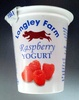 Raspberry Yogurt - Product