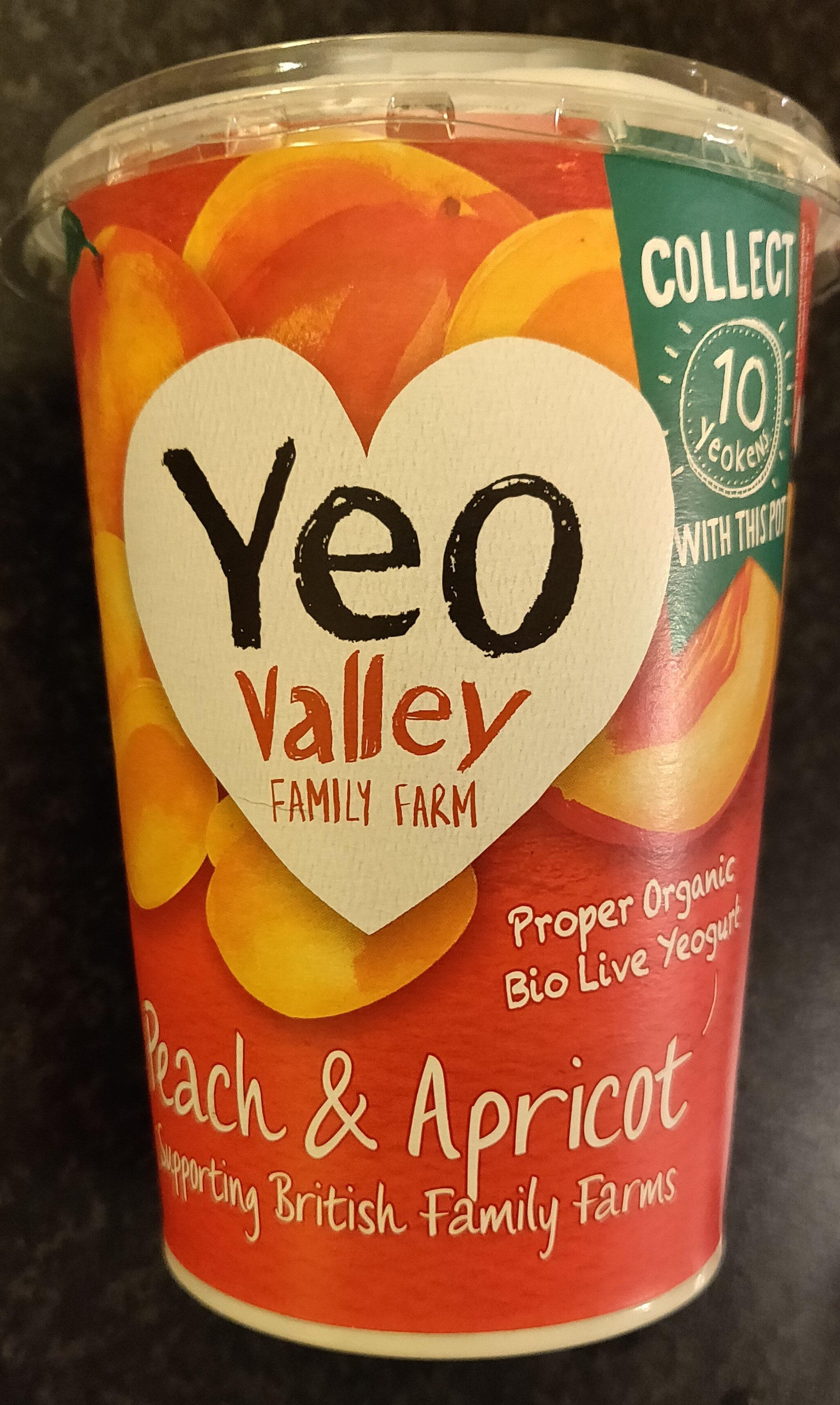 Peach & apricot - Product - en