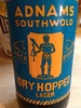 Adnams southwold dry hopped lager - Product