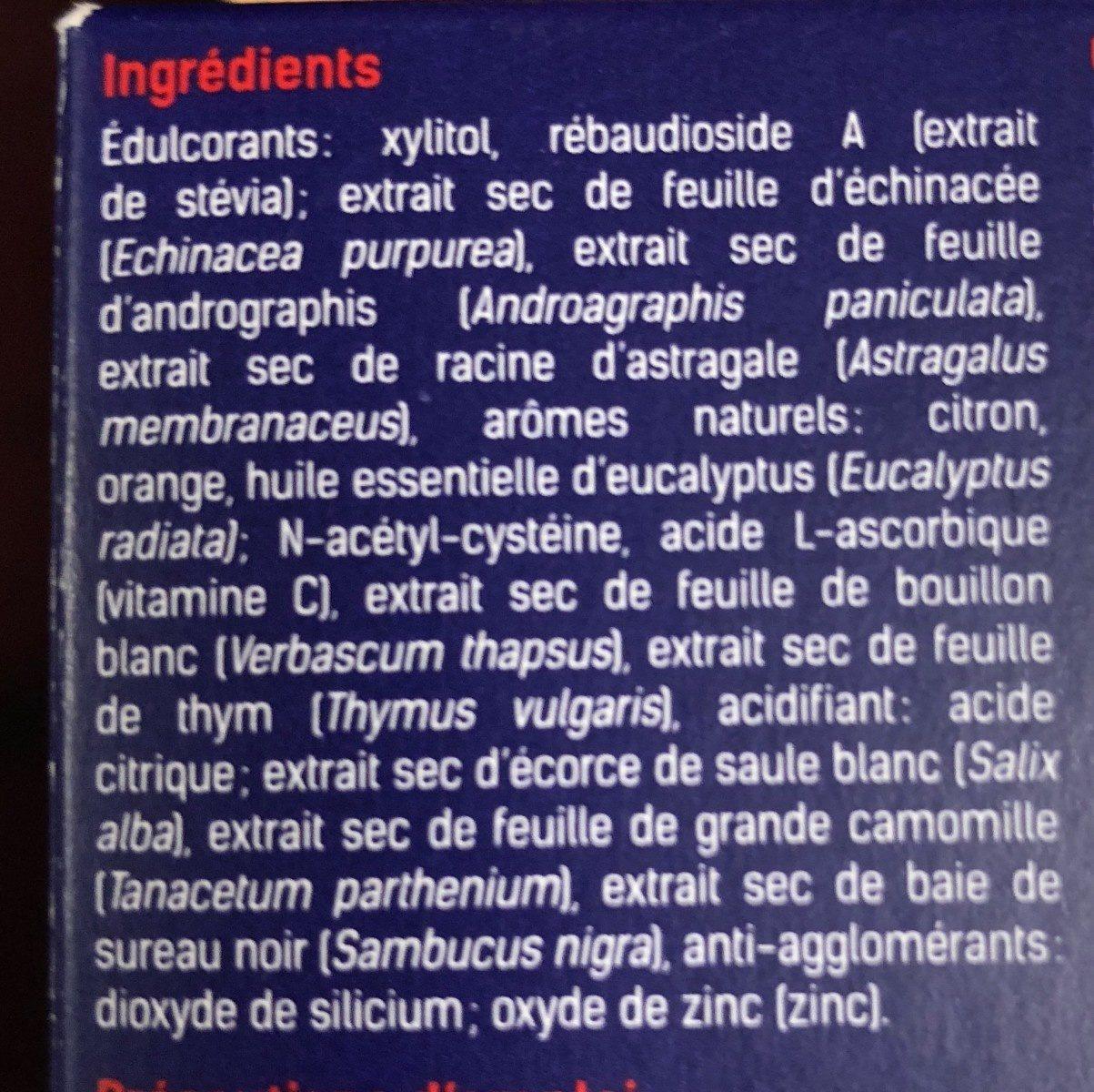 Santé Verte Acti'rub - Ingredienti - fr