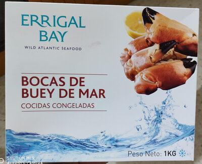 Bocas de buey de mar cocidas congeladas - Producto