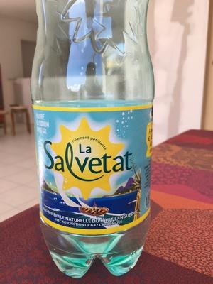 La salvetat eau pétillante - Produit - fr