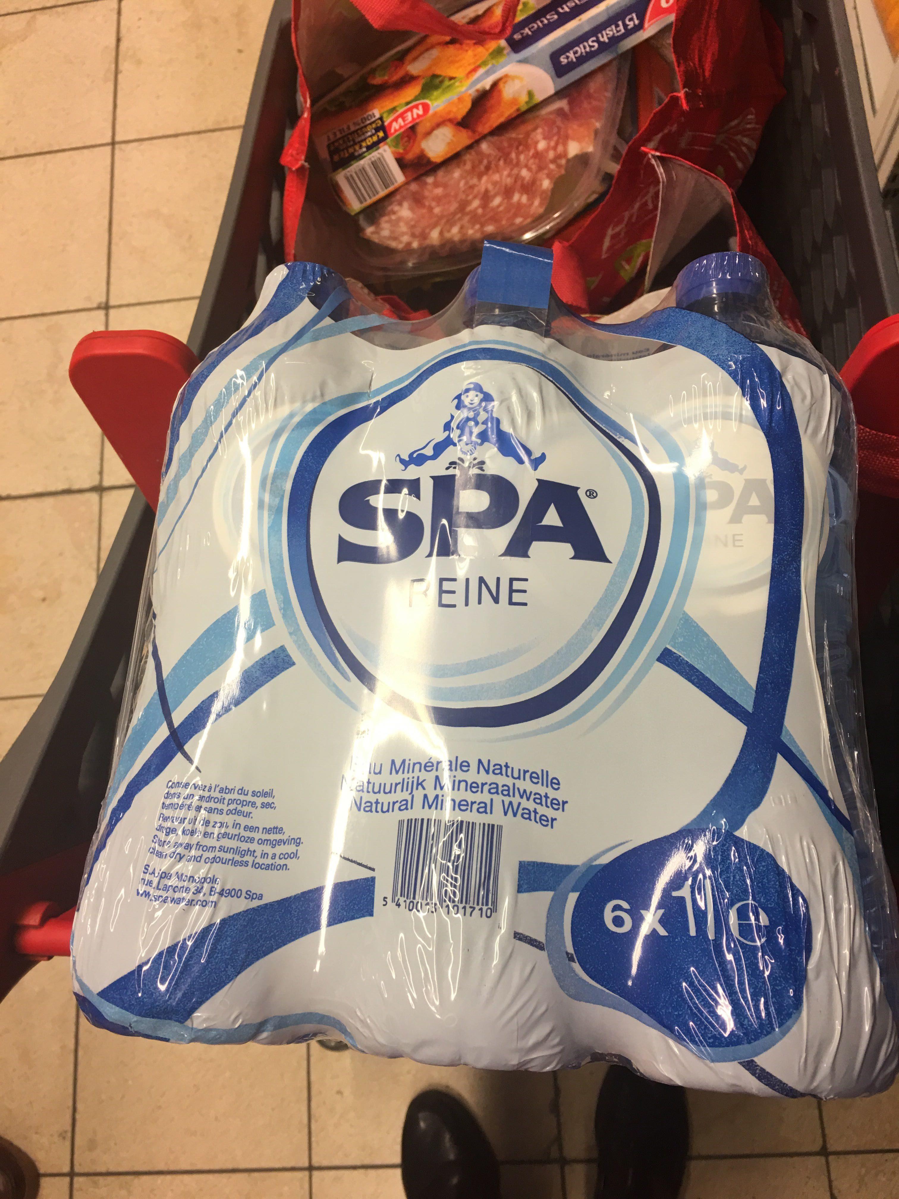 Spa Reine Water Fles 1L PK6 - Produit - fr
