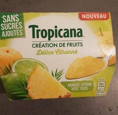 Création de fruits Délice citronné - Product - fr
