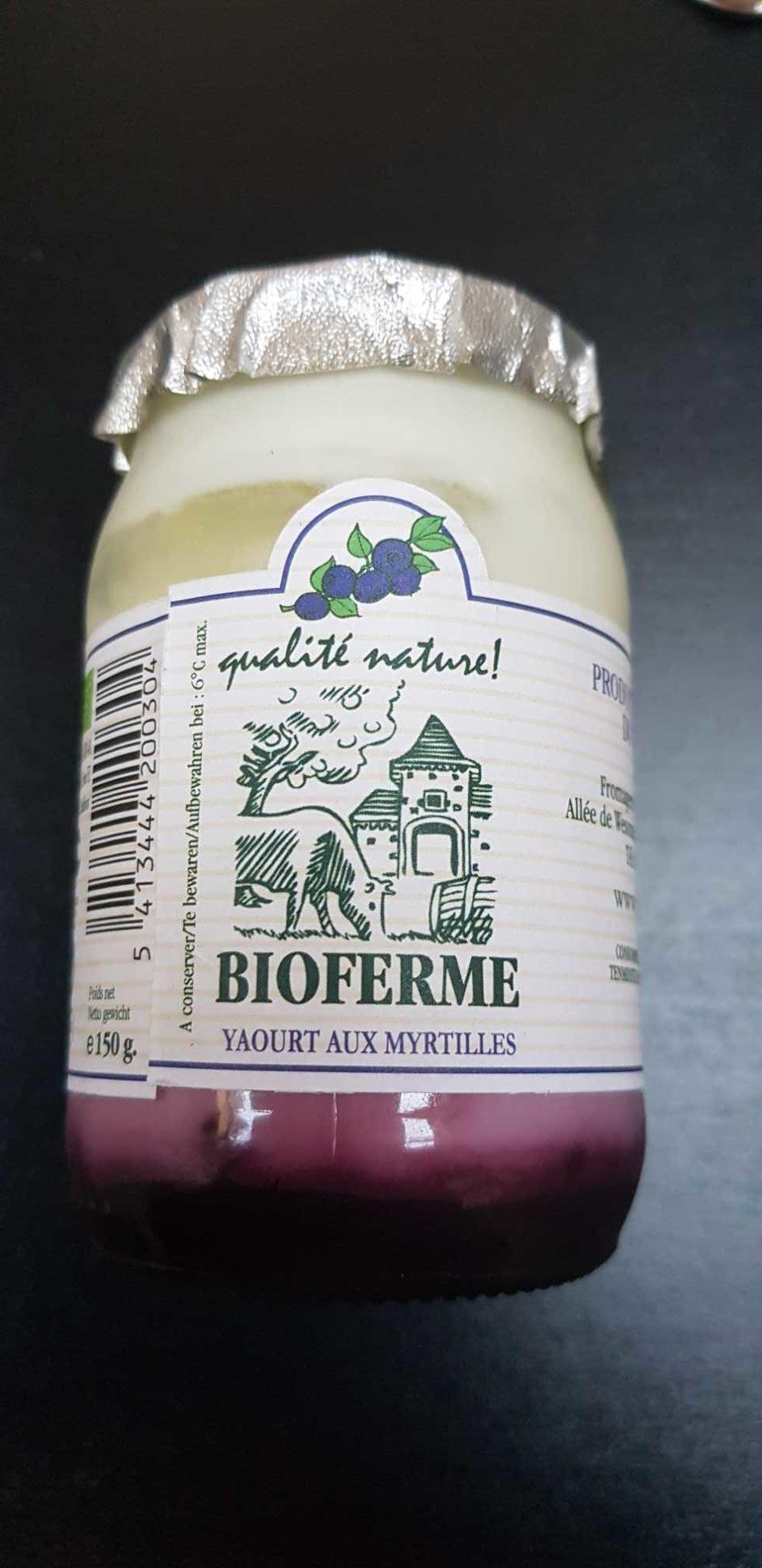Yaourt aux myrtilles - Product
