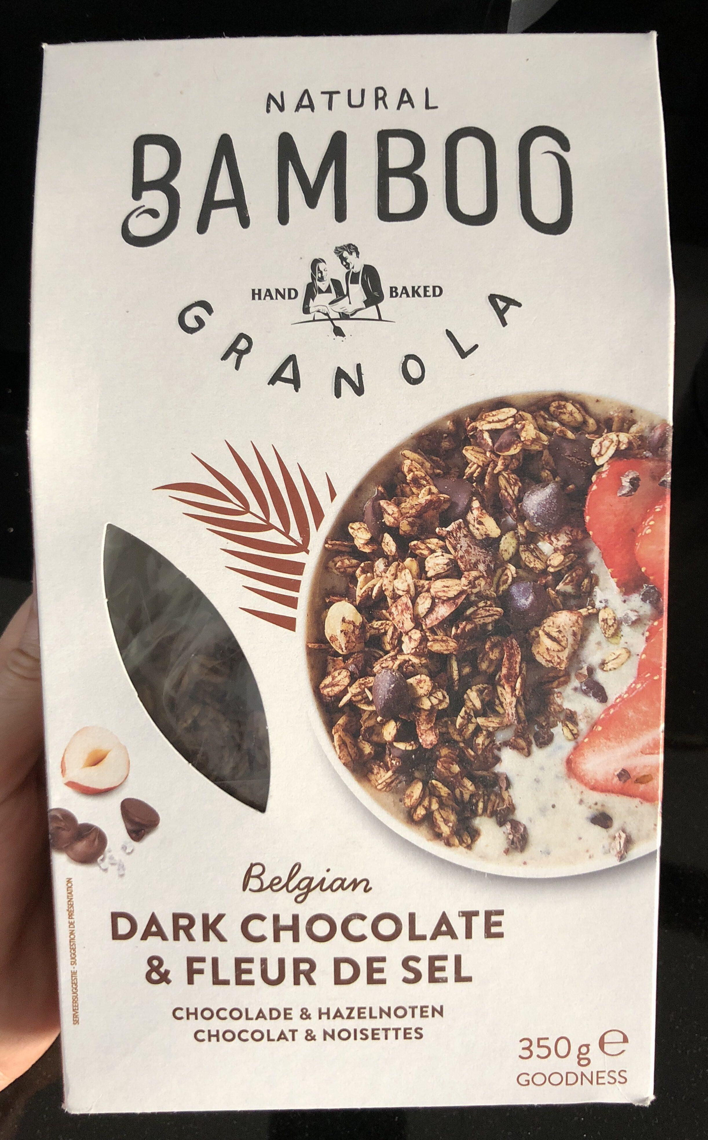 Granola au chocolat noir et fleur de sel - Product - en