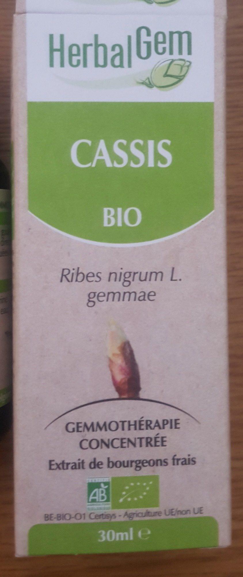 Cassis Bourgeons Macerat Bio Herbalgelm - Produit