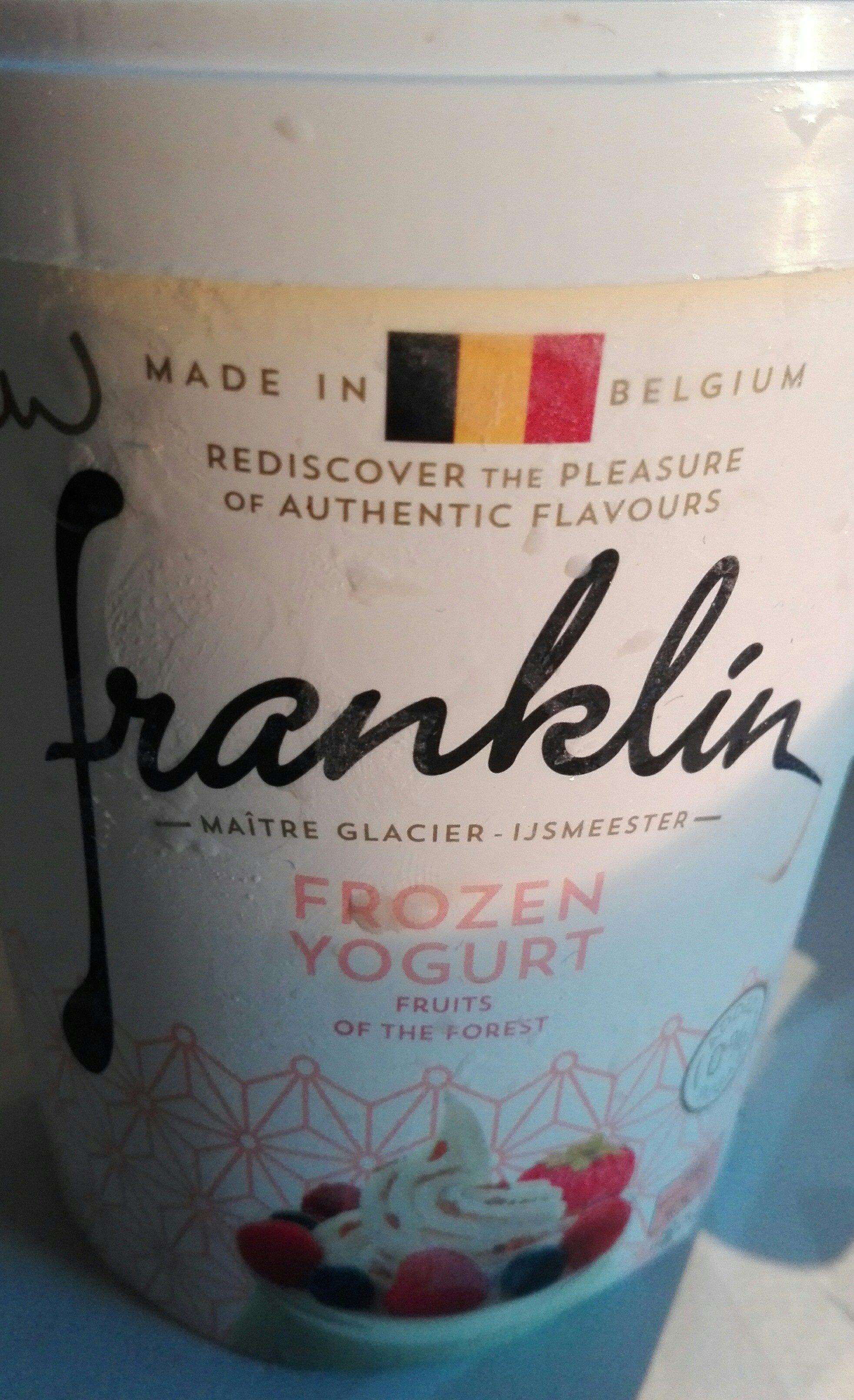 Franklin frozen yogurt - Product
