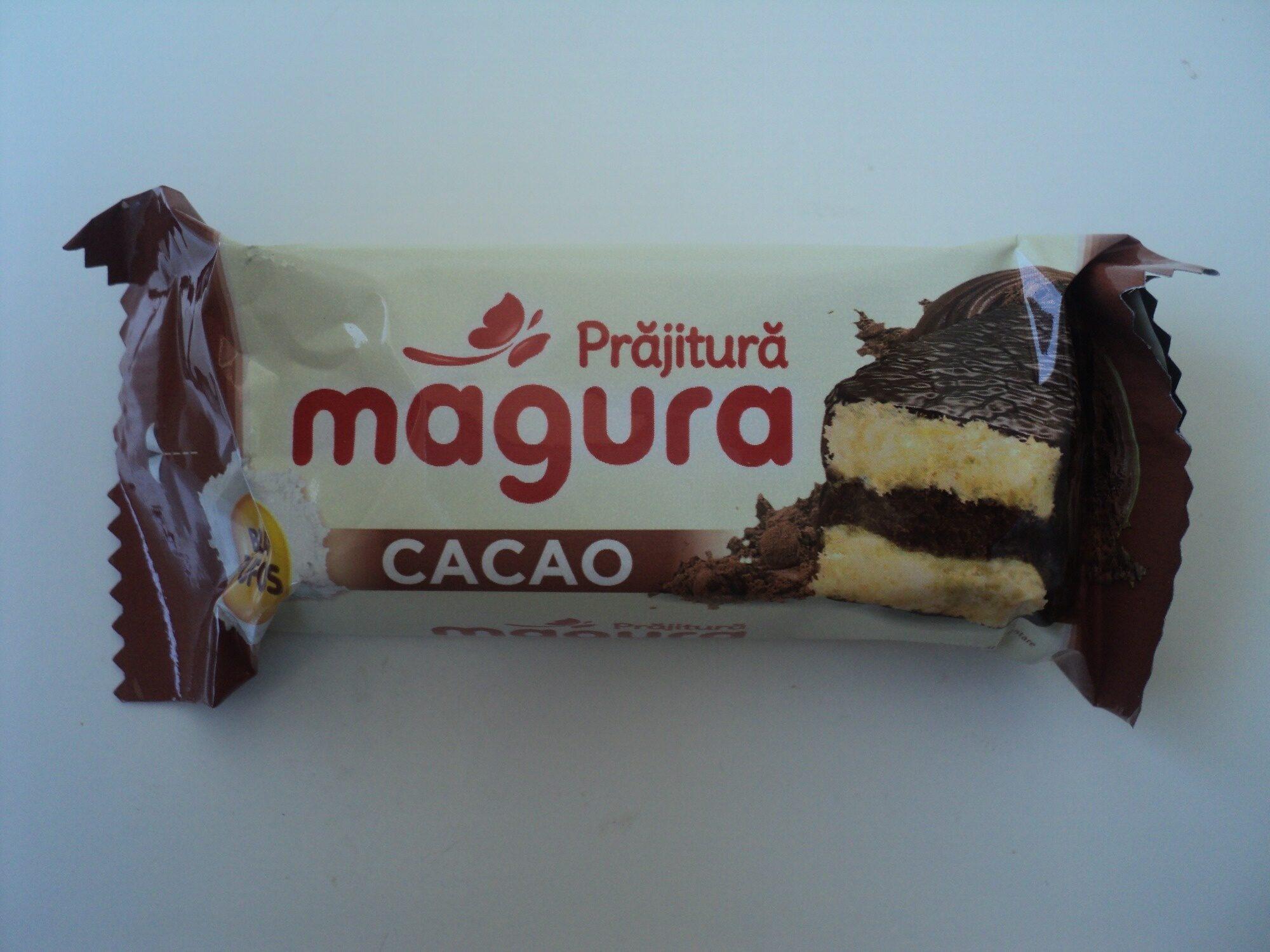 Prăjitură cu cremă de cacao și glazură de cacao - Product