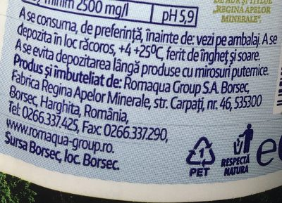 Borsec - Mineral Sparkling Water / Apa Minerala Carbogazoasa - Ingrédients - fr