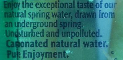 Sparkling Natural Spring Water - Ingredients - fr