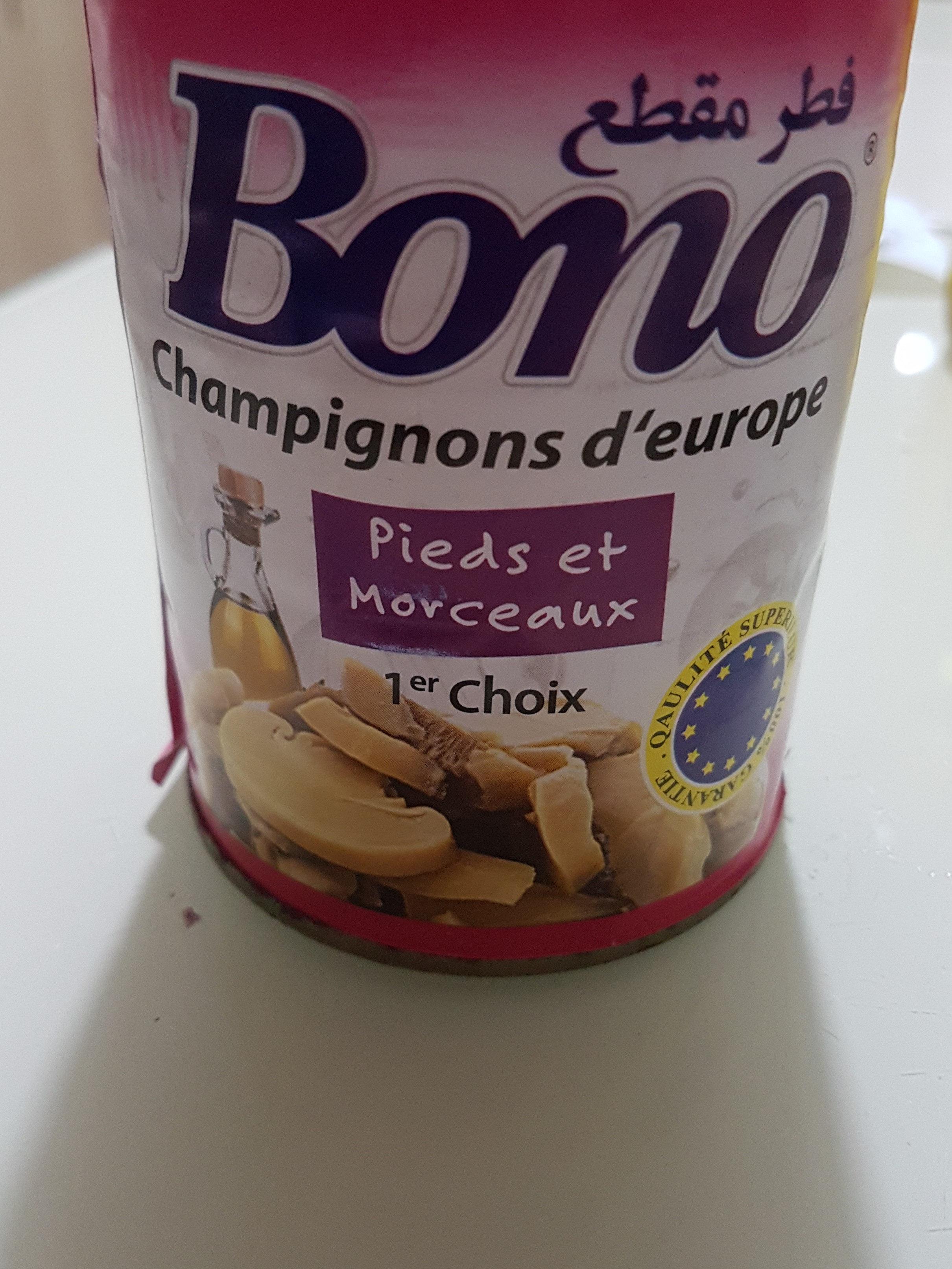 champignons d'europe - نتاج - fr