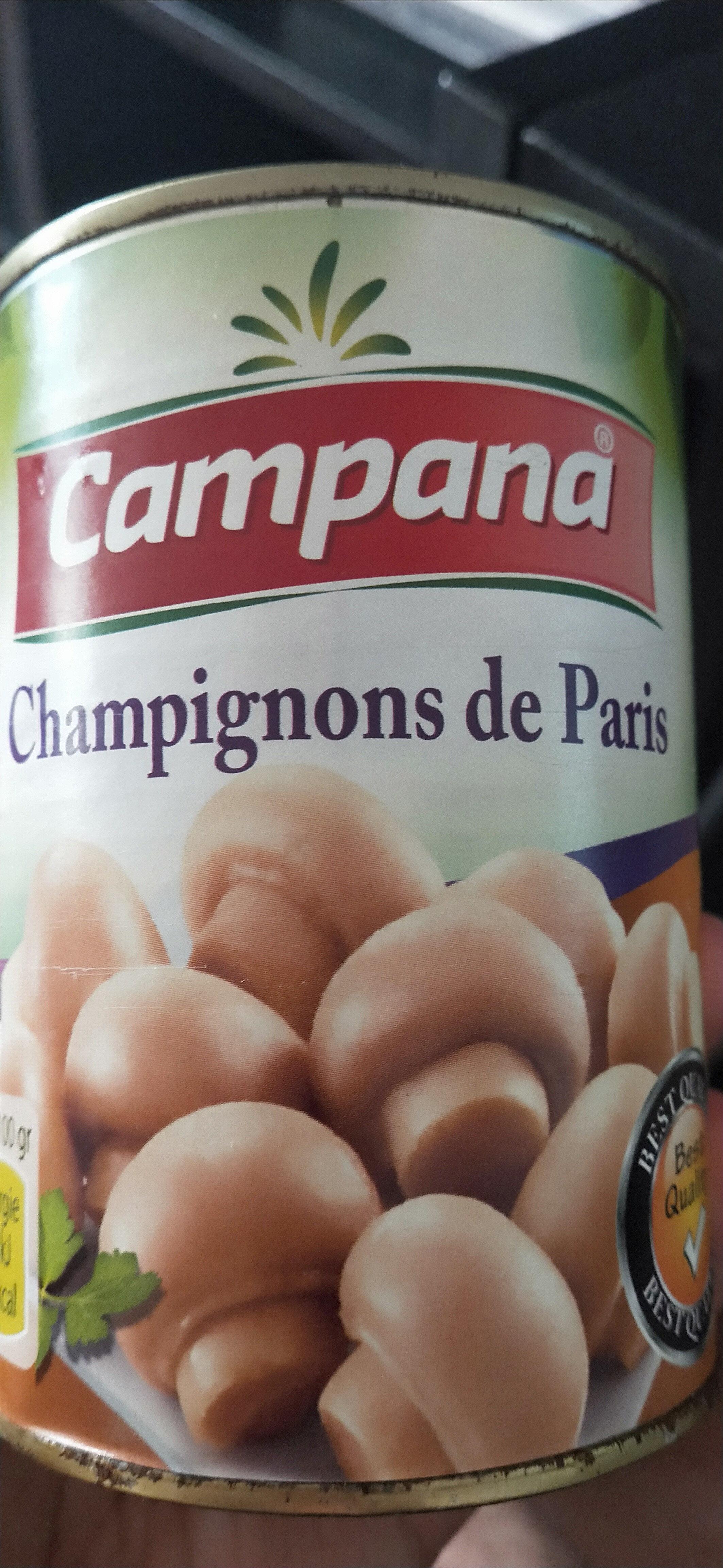 champignons de Paris entier - نتاج - fr