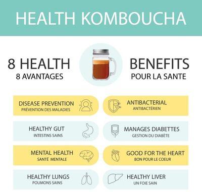 HEALTH KOMBUCHA menthe-citron - Product