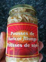 Pousse de haricots mungo (pousse de soja) - Produit - fr
