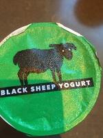 Black sheep yogurt - Product - en