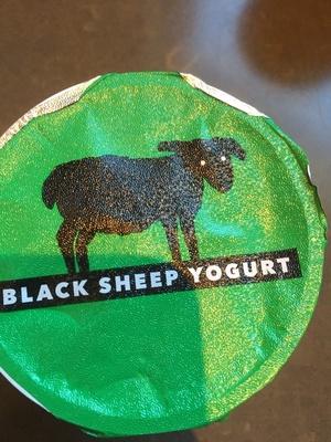 Black sheep yogurt - Product