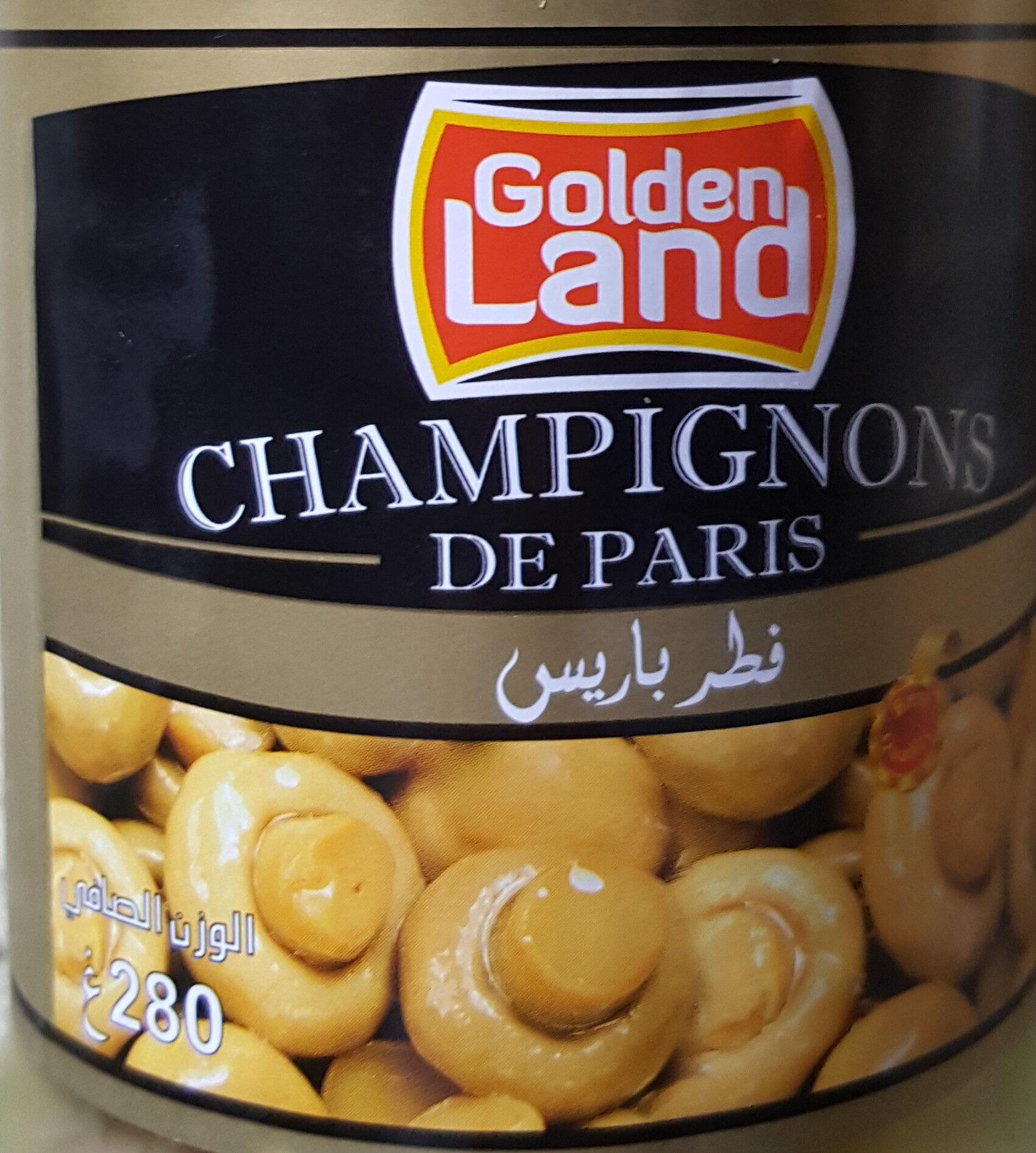 champignon de paris - نتاج - fr