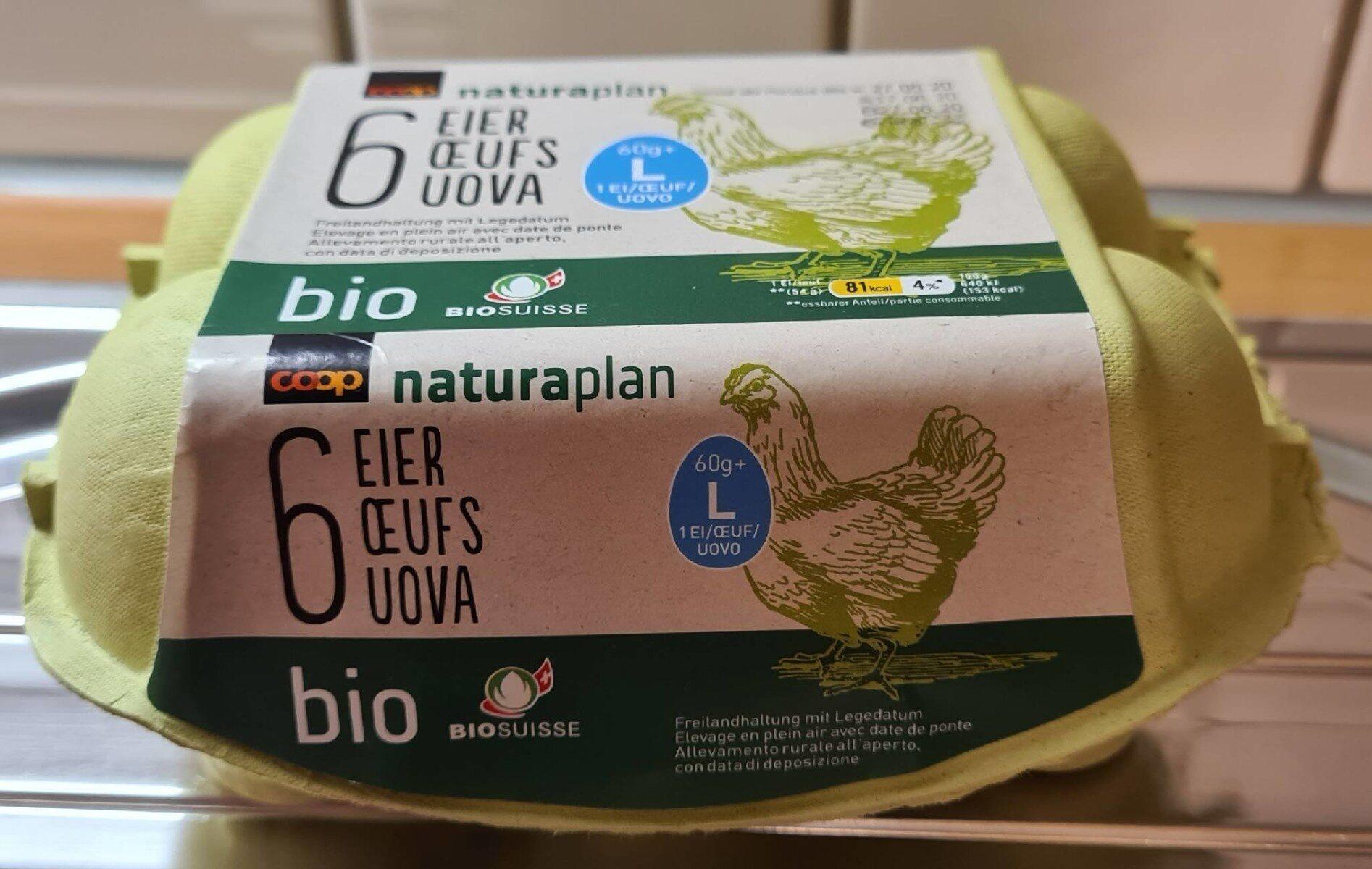 6 oeufs L bio - Produit - fr