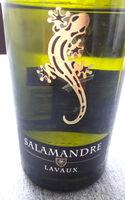 Salamandre Lavaux AOC 2014 - Produit - fr