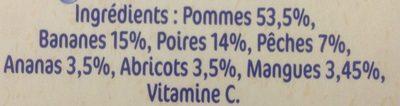 NESTLE NATURNES Compotes Bébé Fruits du soleil -4x130g -Dès 8 mois - Ingredienti - fr