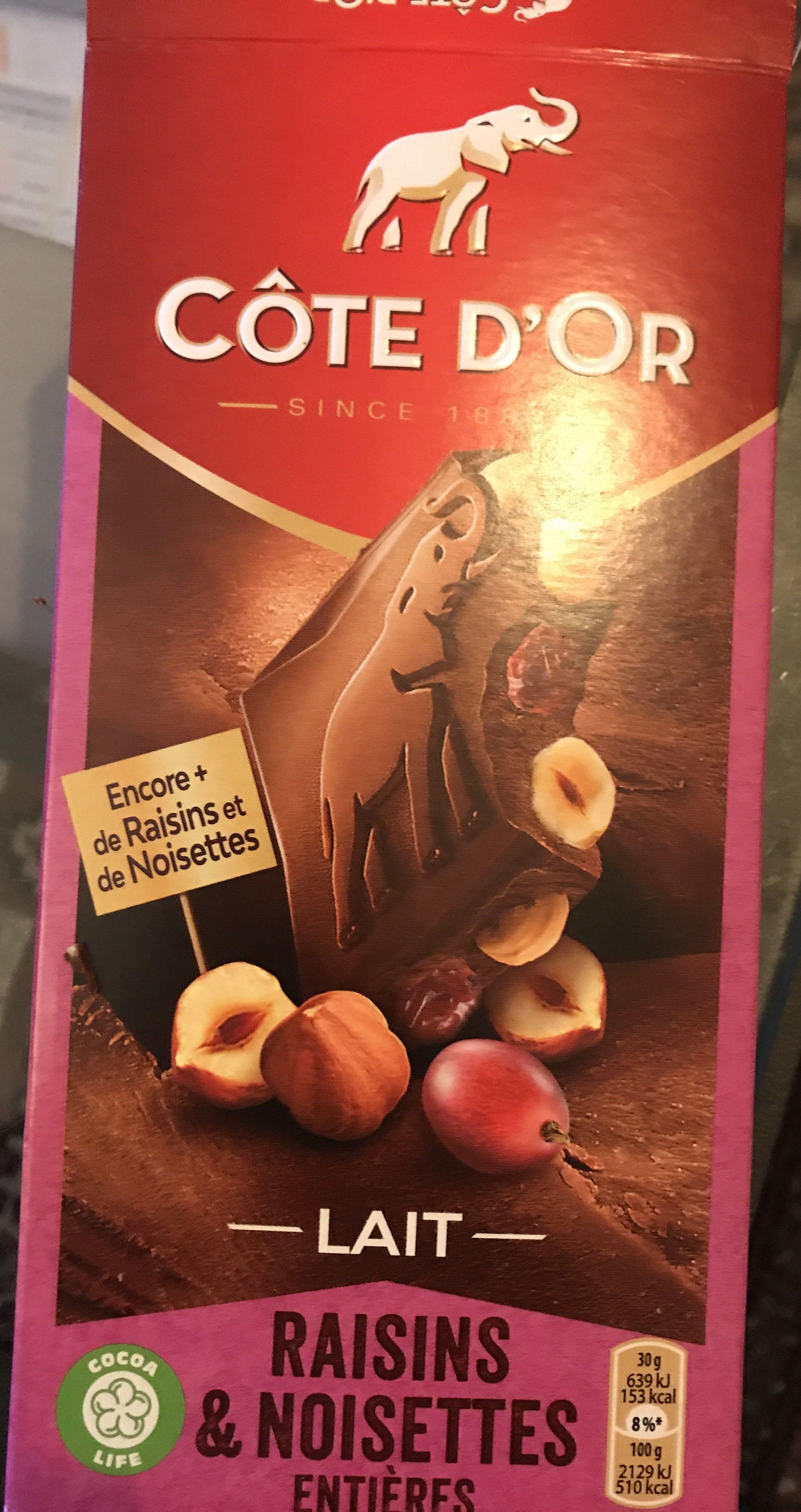 Bloc Lait raisins noisettes entières - Produit - fr