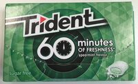Trident 60 Minutes Of Freshness Spearmint Flavour - Producto - es