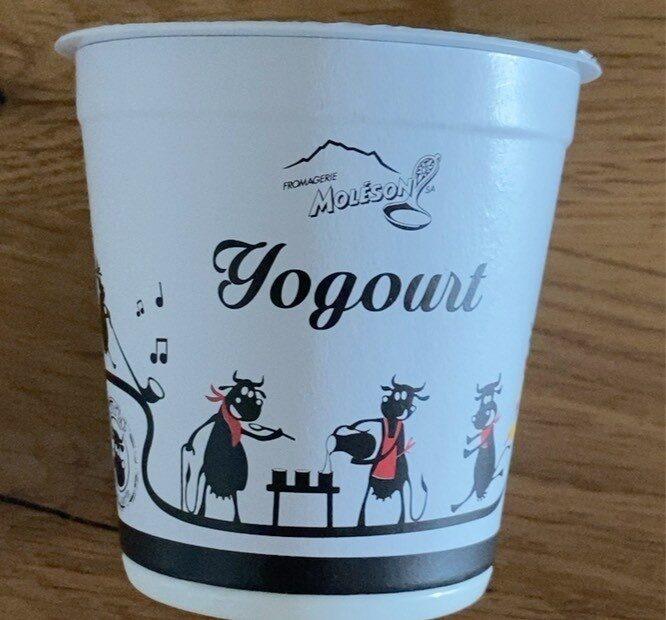Yogourt Nature - Prodotto - fr