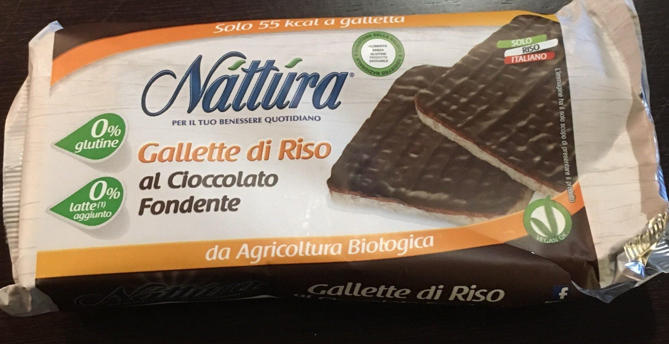 Galette de riz au chocolat - Prodotto - fr