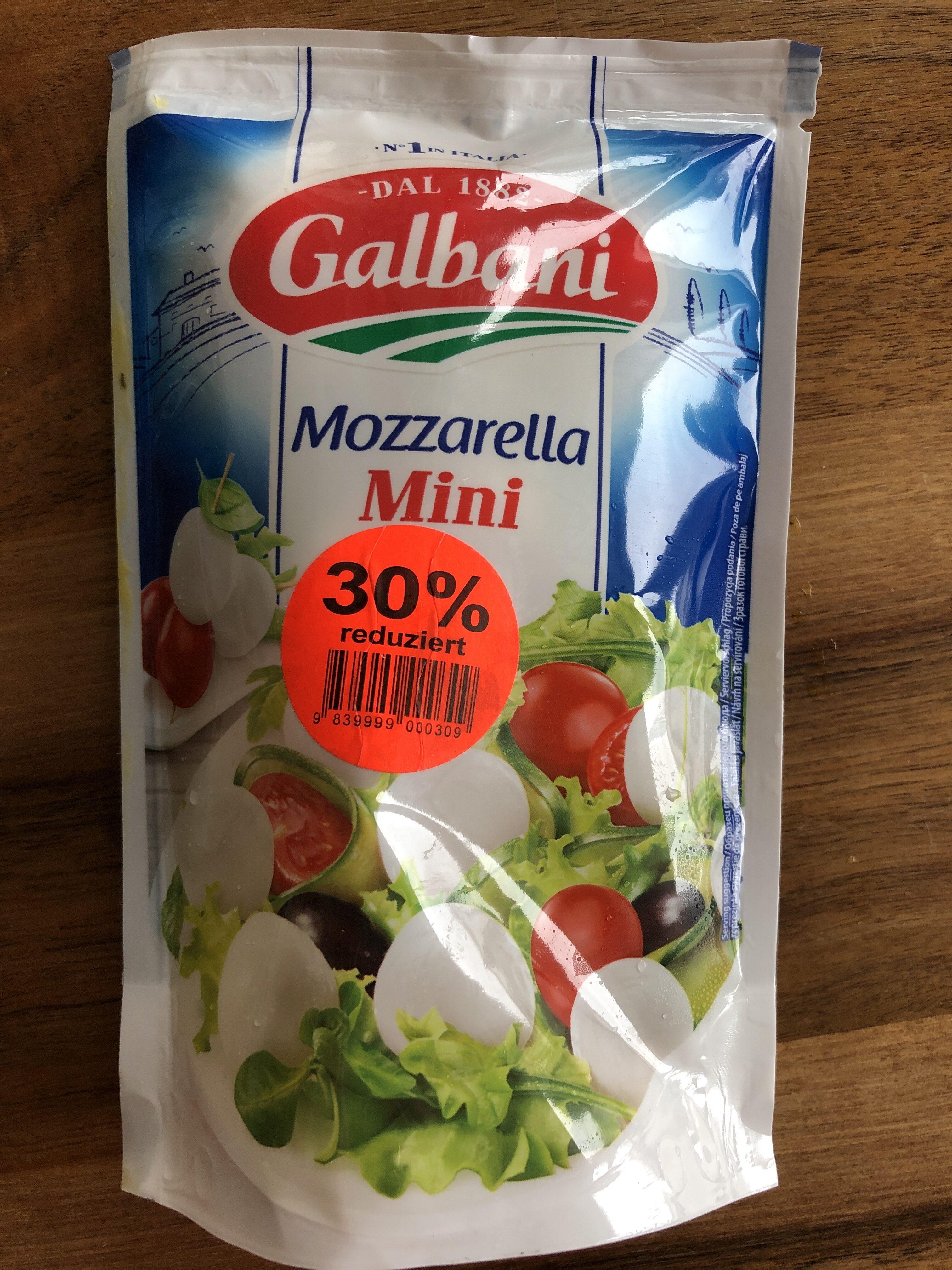 Mozzarella mini - Product - en