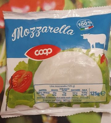 Mozzarella - Product - it