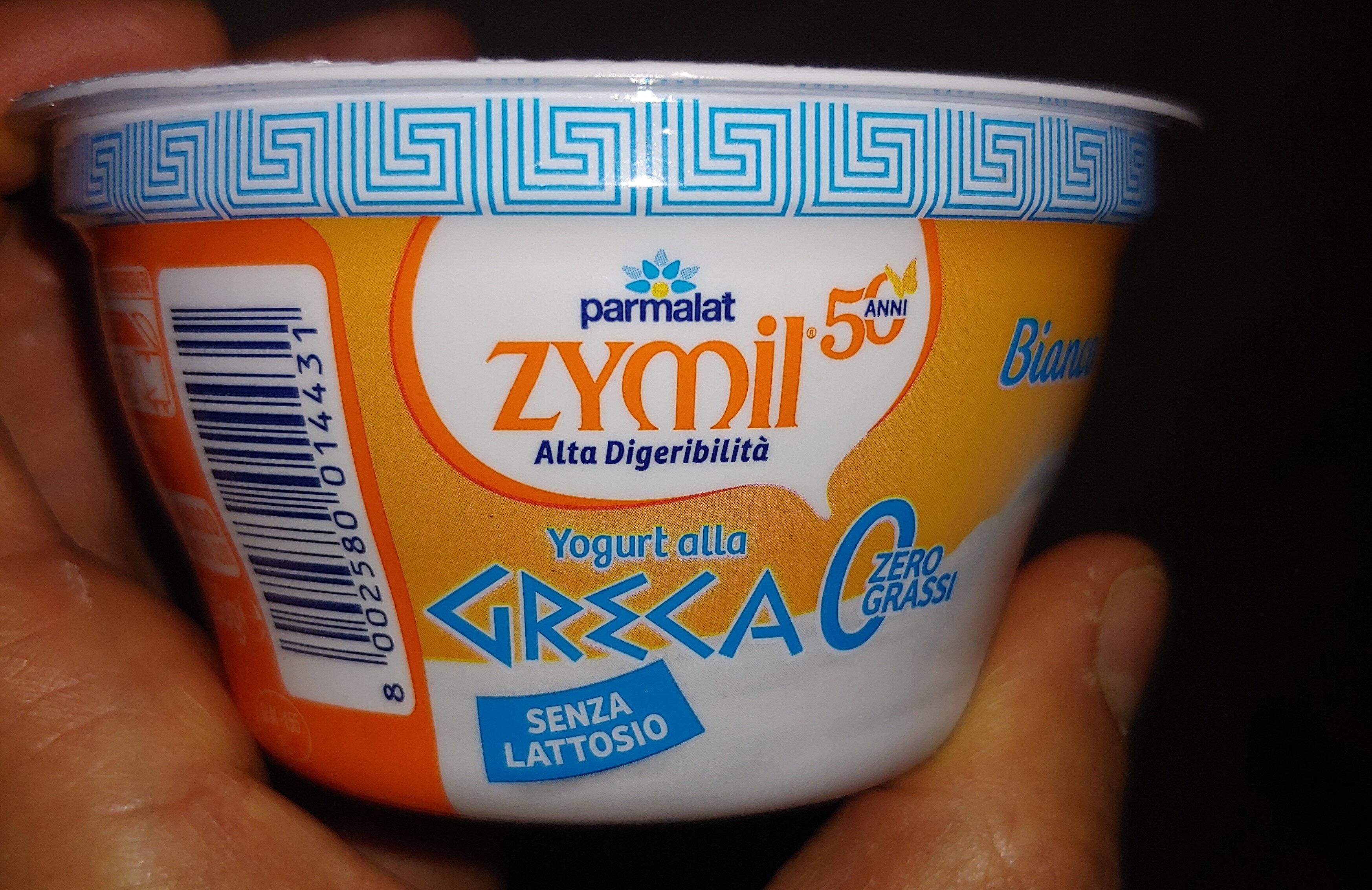 yogurt alla greca zero grassi senza lattosio - Product - it