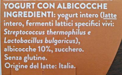 YOGURT - Ingredients