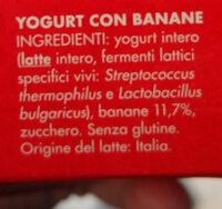 yogurt intero con banane - Ingrédients - it
