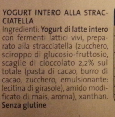 Yogurt alla straciatella - Ingredienti