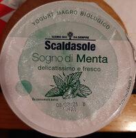 Yogurt magro alla menta - Produit - it