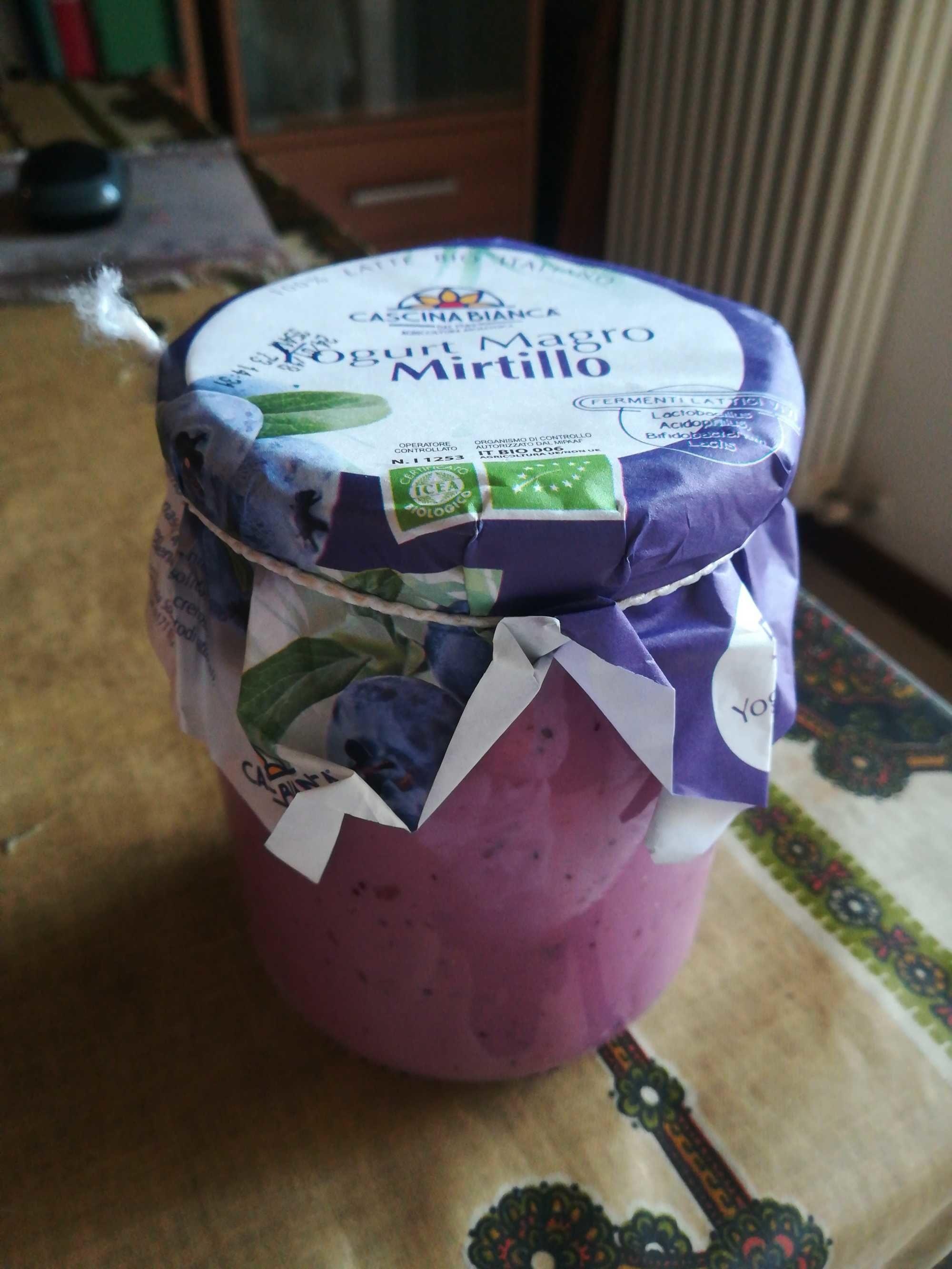 Yogurt Magro Mirtillo - Product
