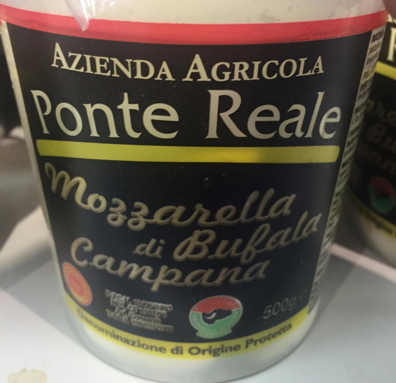 Mozzarella di bufala campana - Produit - fr