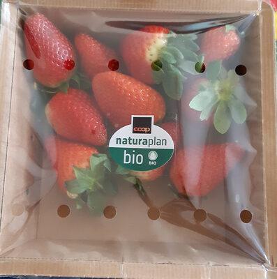 Bio Fraises - Product - fr