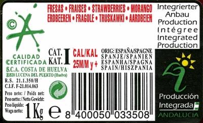 Fresones - Ingredientes - es