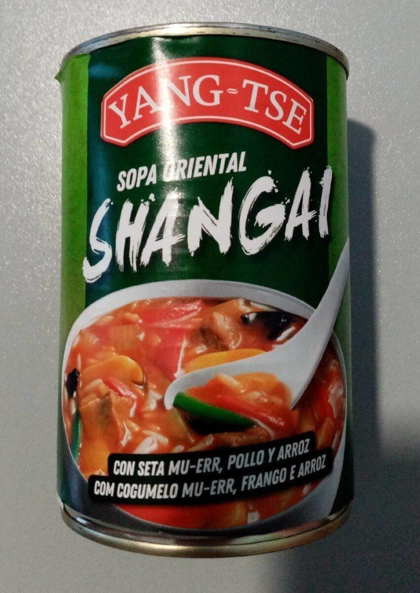 Sopa oriental shangai - Product - es