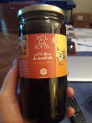 Mel de Galicia