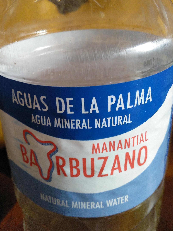 AGUA DE LA PALMA - Producto