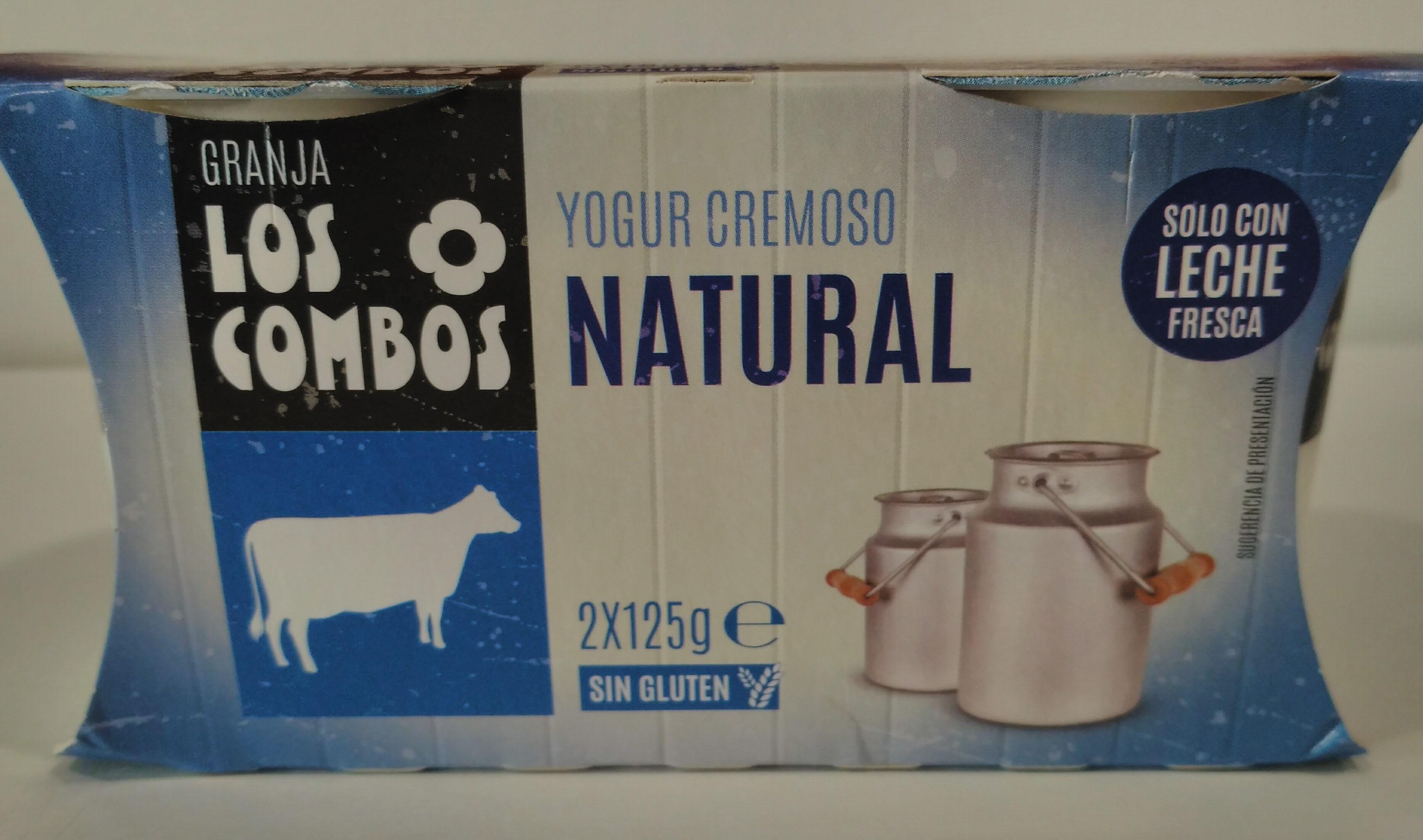 Yogur cremoso natural - Producto - es